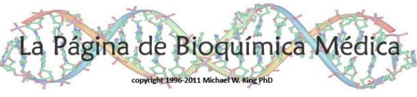 La página de bioquímica médica