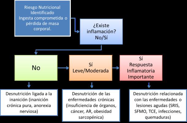 Ilustración 1. Clasificación de la Desnutrición según la Etiología