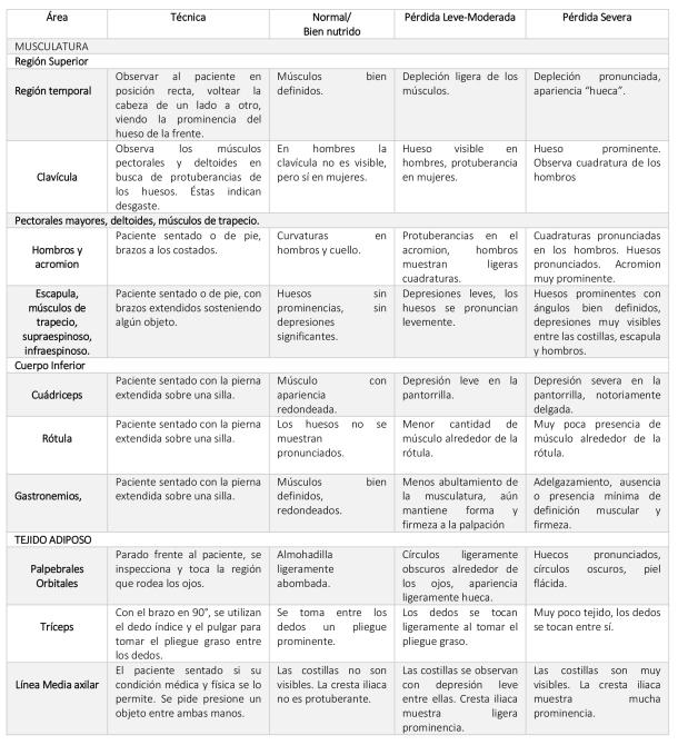 Tabla 2. Clasificación de las reservas musculares y grasas