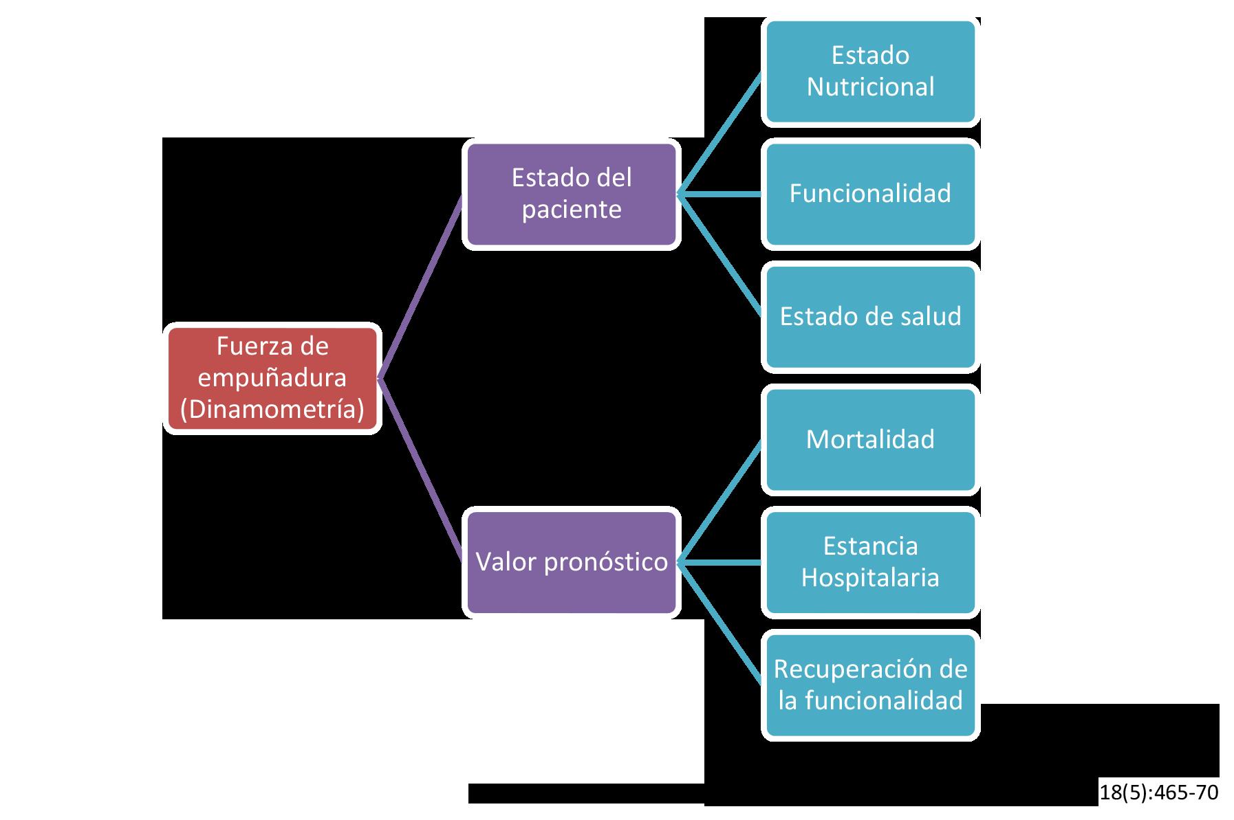 Clasificacion desnutricion perdida de peso geriatrian