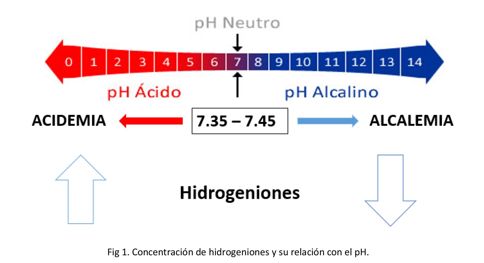 Alteraciones ácido-base en el soporte nutricional Por: Luis González ...