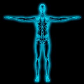 Una Radiografía Metabólica a Nuestro Sistema Óseo Mineral Por: JoséLongo